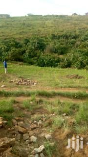 Residential Land For Sale | Land & Plots For Sale for sale in Kagera, Bukoba Urban